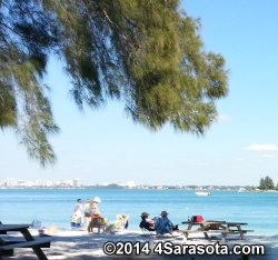 South Lido picnic overlooking Sarasota